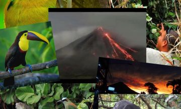 RAIN FOREST ARENAL VOLCANO FULL DAY TOUR & COMBINATIONS
